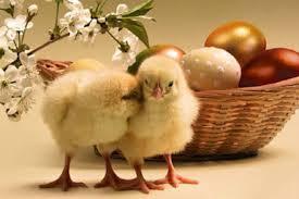 Pasqua last minute a Riccione aprile