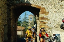 Bike per mini gruppi: la dolce vita in romagna