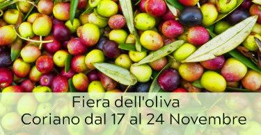 fiera dell'oliva